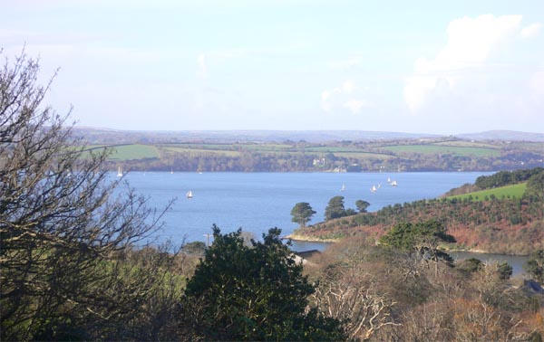Carrick Roads view from St Just-in-Roseland